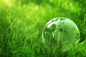 Green glass globe in the grass